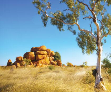 Preliminary Aboriginal Heritage Test